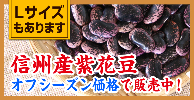 信州産紫花豆 オフシーズン価格で販売中!