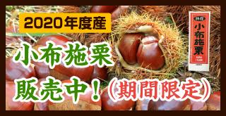 2019年度産 小布施栗 販売中!(期間限定)
